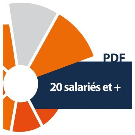 20 salariés et plus - CCI du Morbihan (PDF)